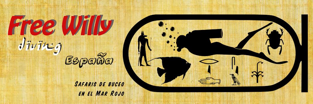 Mar Rojo - Safaris de buceo en español y portugués