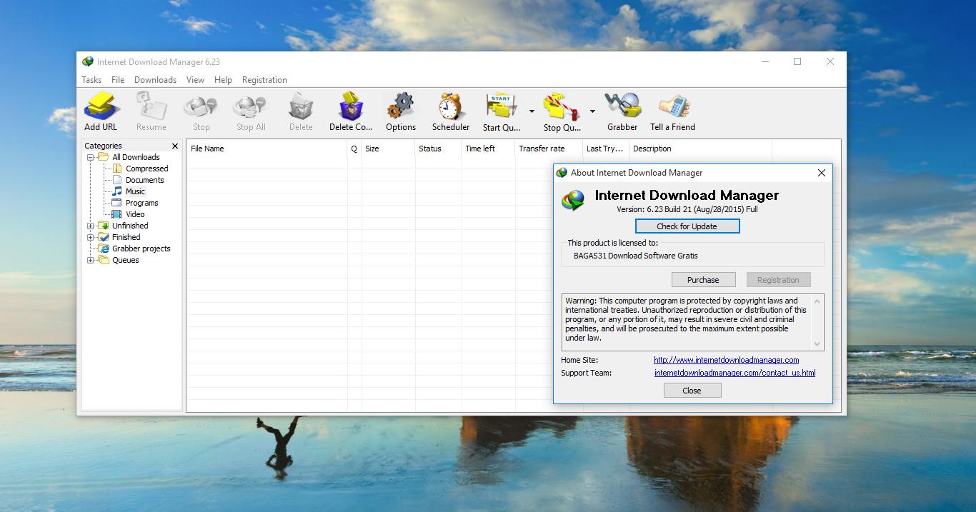 internet download manager crack version 6.23
