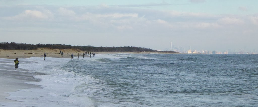 Going to the water many schoolies in sandy hook nj for Nj surf fishing reports