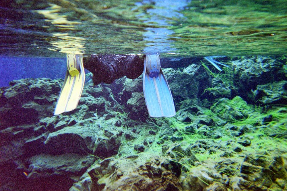 snorkeling between tectonic plates