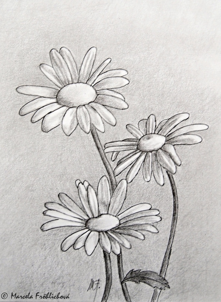 Dreamdecor Cz Flowers Pen And Pencil Kvety Perem A Tuzkou