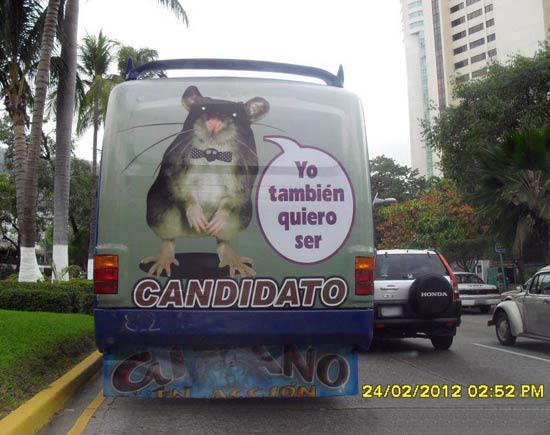 imagenes chistosas de guatemala - CAPTADO EN EL MOMENTO EXACTO !!! Graciosas