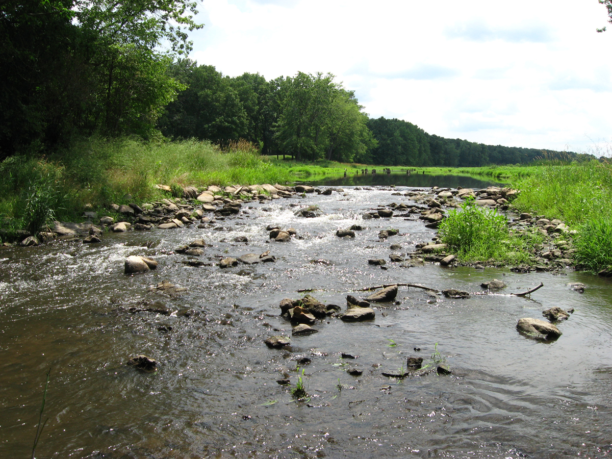 Restoring fish flow in the st joseph river watershed for St joseph river fishing