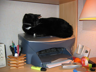 imagen gato dormido impresora