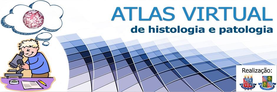 Atlas virtual de histologia e patologia