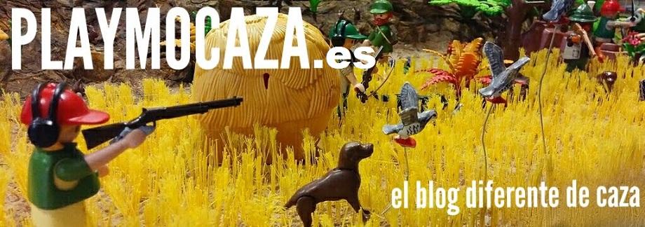 Playmocaza - Dani Gómez