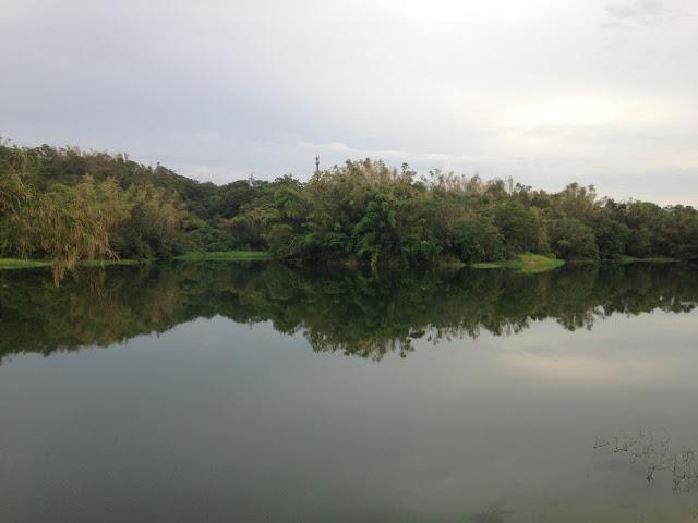 蘭潭水庫環潭路邊景色