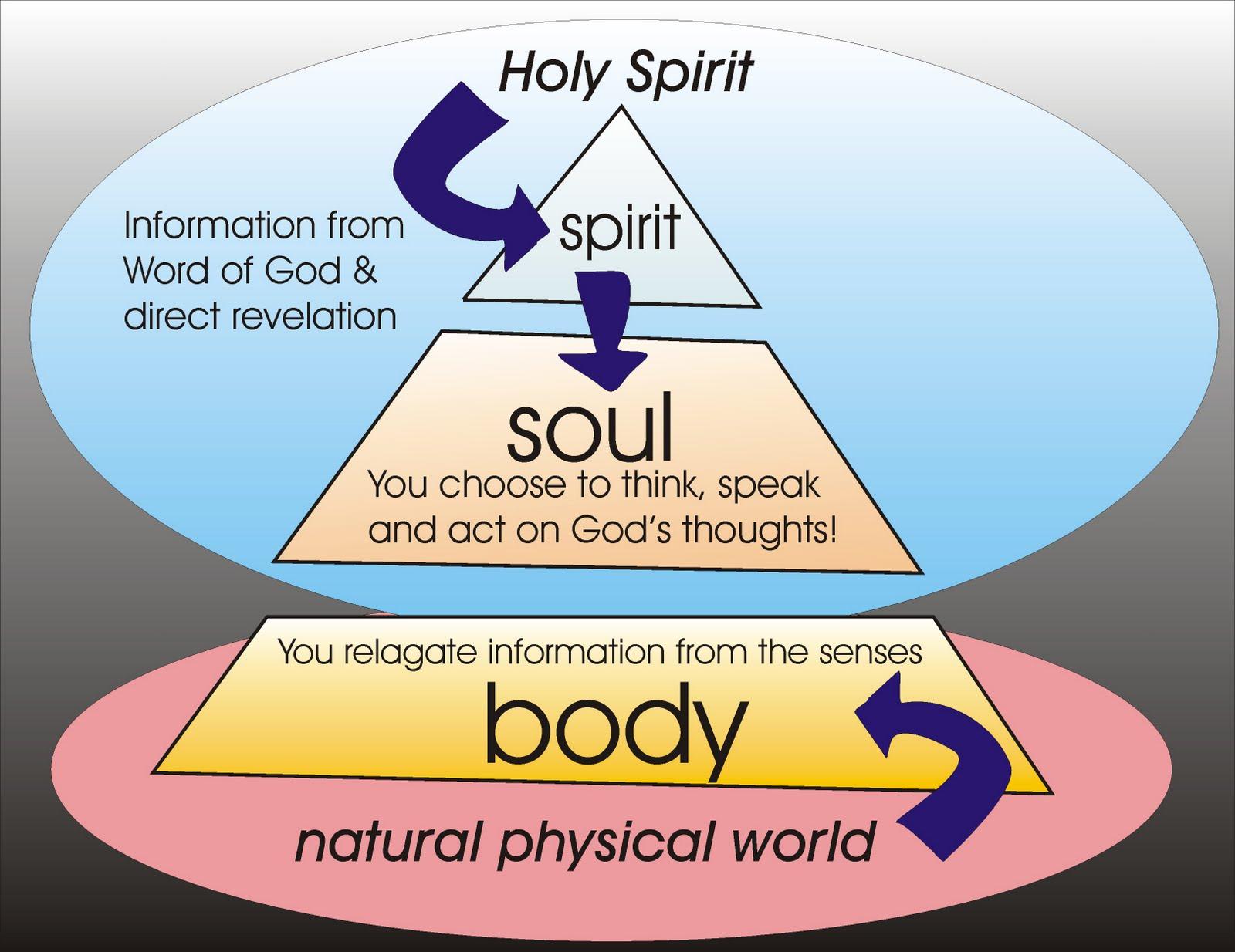 Spiritsoulbody C on Spirit Soul Body Bible Diagrams