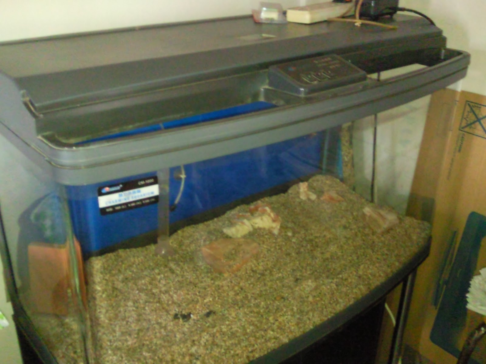 Fish aquarium tanks for sale - 3 Feet Fish Tank With Cabinet Full Asscerrioes Lightings Pumps Etc