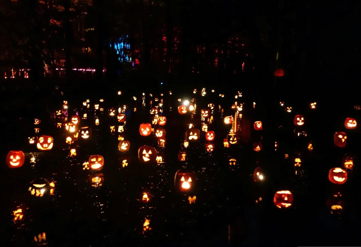 Digit Al Dozen Does Skittles Day 5 Glow In The Dark