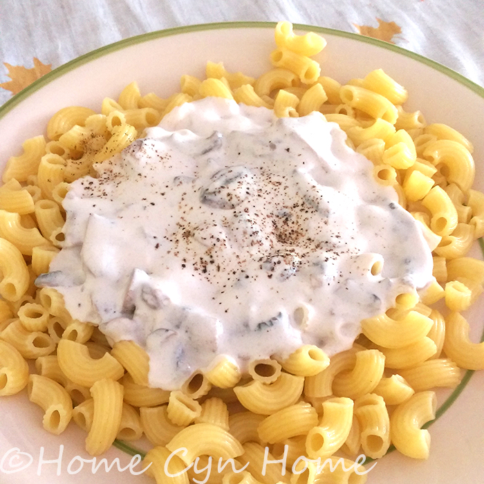 pasta and mushroom cream sauce, it doesn't get any simpler than this