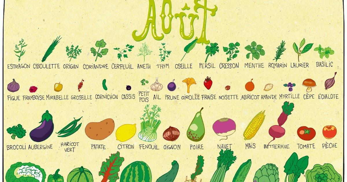 Pissenlit ao t calendrier des fruits et l gumes - Fruits et legumes aout ...