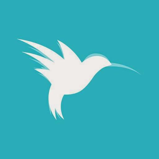 Daruieste aripi