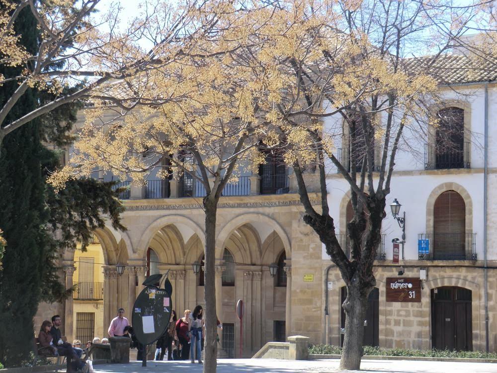 ubeda plaza