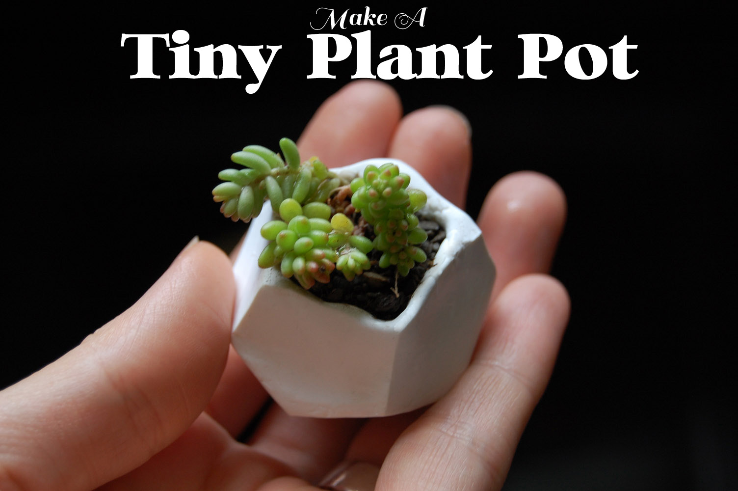 ... jewelry and accessories, Miniature 3D painting and Plant pot tutorial