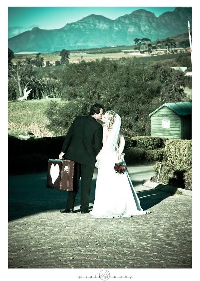 DK Photography Mari27%252B Mariette & Wikus's Wedding in Hazendal Wine Estate, Stellenbosch  Cape Town Wedding photographer