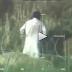 """Afghanistan, uomo fa """"all'amore"""" con una mucca: il video"""