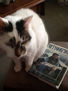 Sam the Cat ponders the mysteries of Metamorphosis.