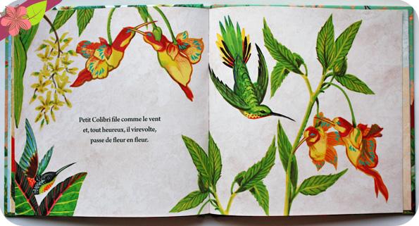 Petit colibri de Catherine Laurent et Bénédicte Nemo - éditions Cépages