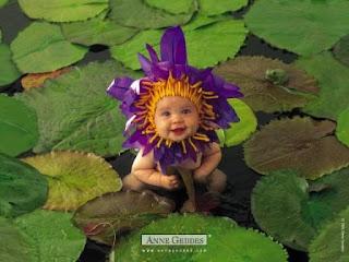 bebe flor de anne geddes