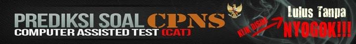 Panduan Tes CAT CPNS 2014
