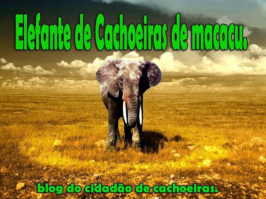Elefante de Cachoeiras.