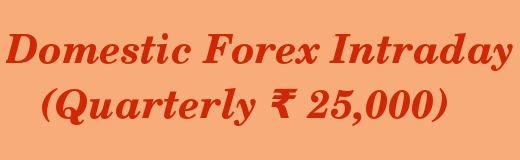 Domestic Forex Intraday