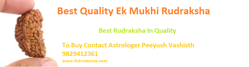 Rudraksha Dealers in Jaipur
