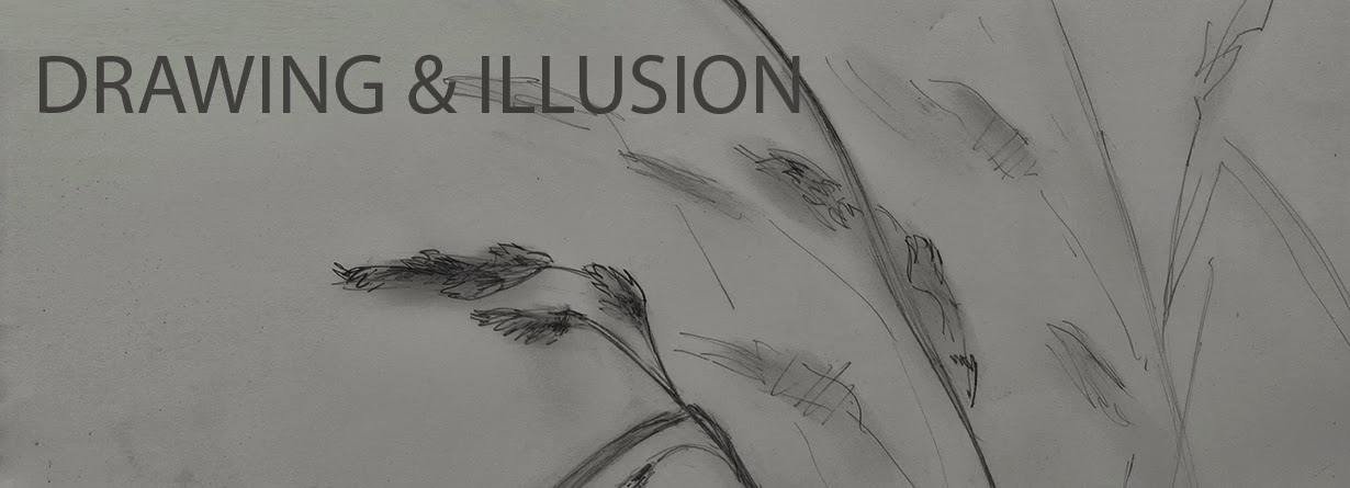 Drawing and Illusion