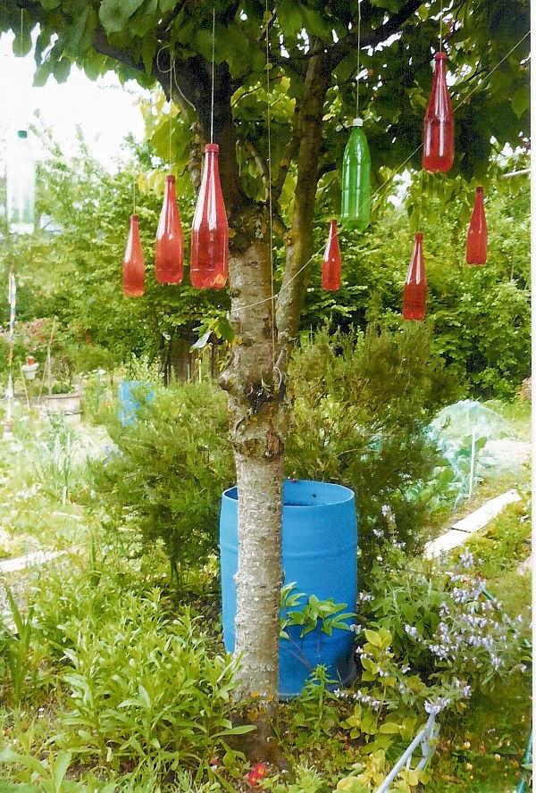 Historim ile saint germain les jardins familiaux - Faire peur aux oiseaux jardin ...