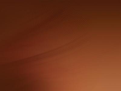 Ubuntu 9.04 default wallpaper