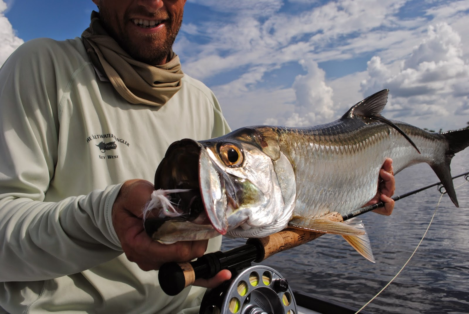 Wildfly Charters Tarpon on Fly