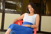 Santhoshi Sharma sizzling photos-thumbnail-18