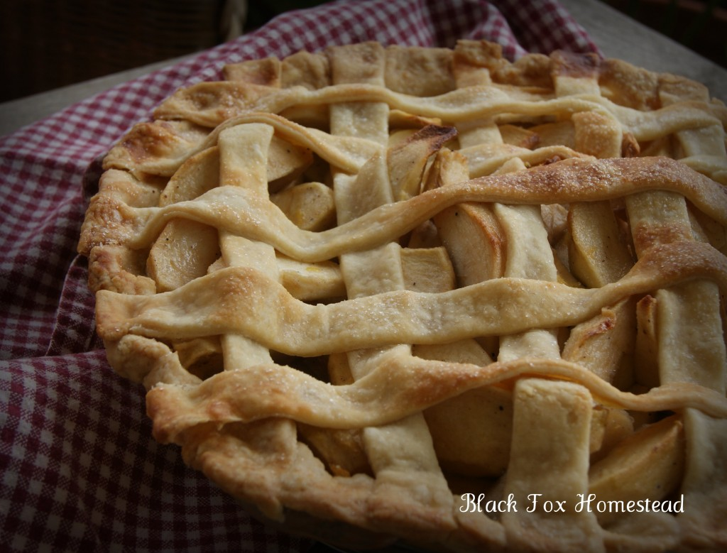 Old-Fashioned Lattice Top Apple Pie from Black Fox Homestead