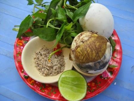 Trứng Vịt Lộn / Hột Vịt Lộn (Fetal Duck Eggs)