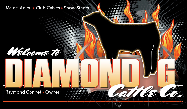 DIAMOND G CATTLE CO.