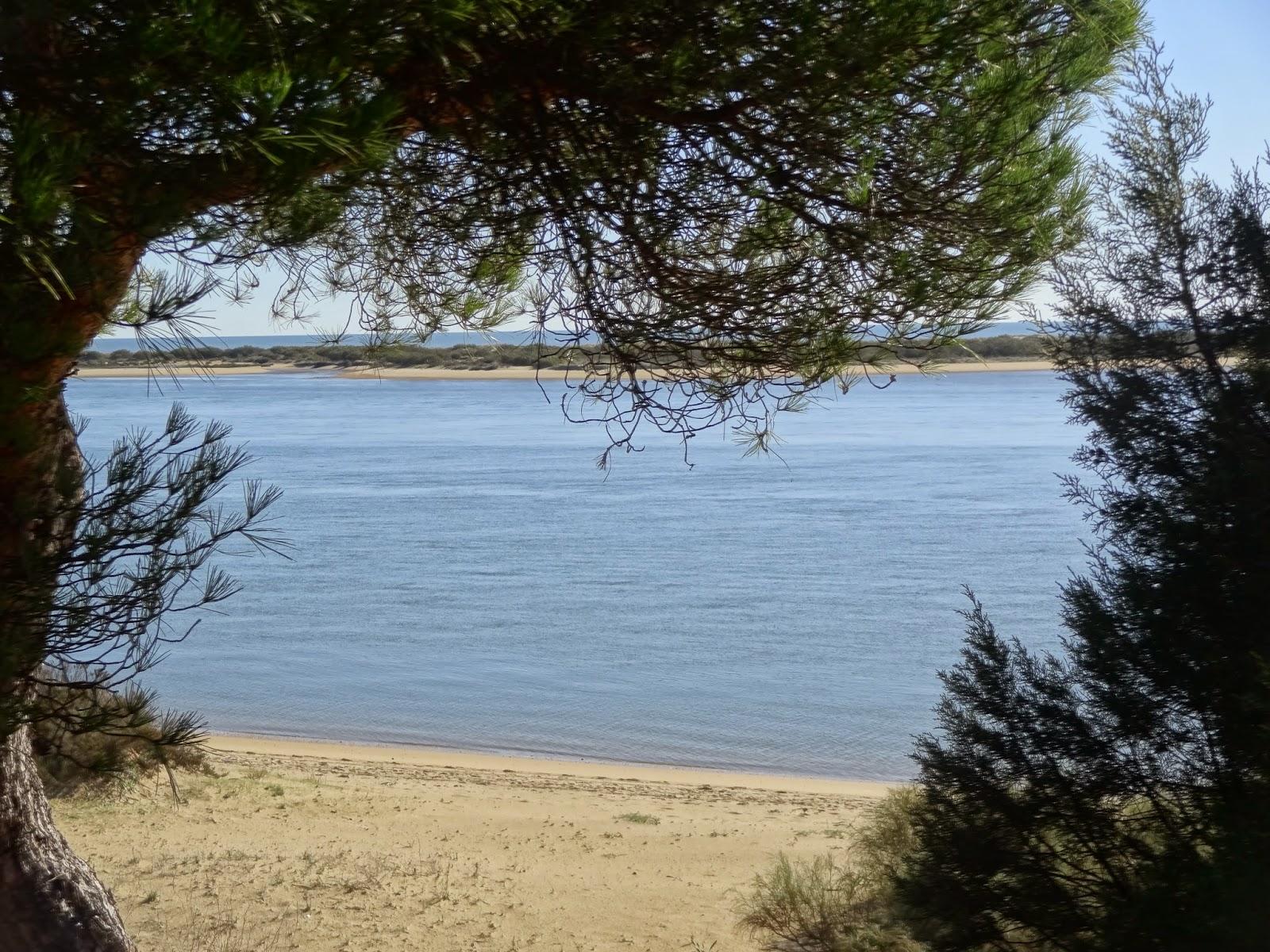 beach nuevo portil