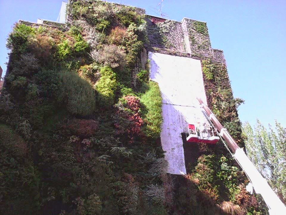 Desmontando el caixaforum jardines verticales y for Jardin vertical caixaforum