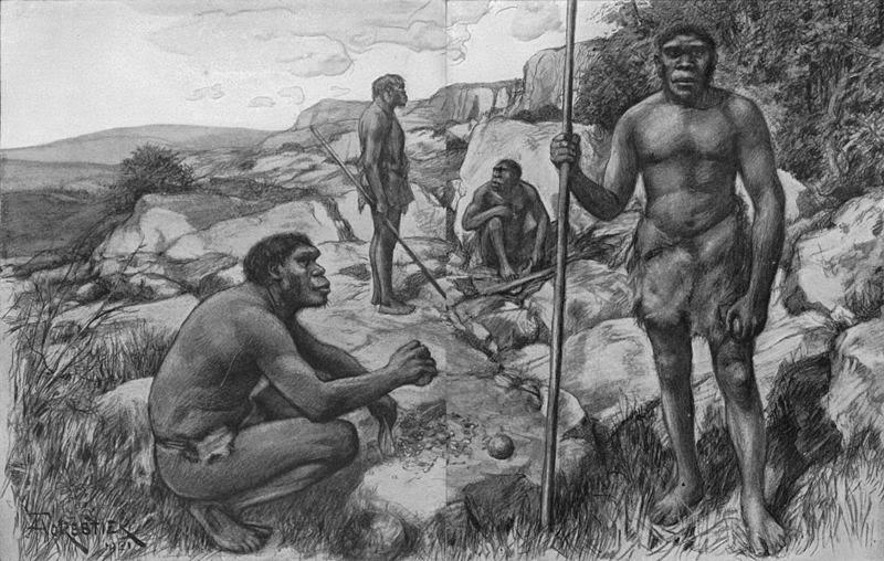 Gambar Manusia Purba - Homo Rhodesiensis
