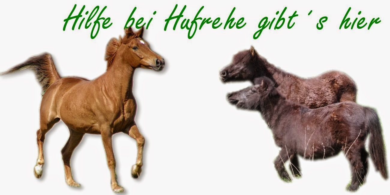 http://www.tierheilkundezentrum.eu/pferde/krankheiten/hufrehe/hufrehe-hilfe/