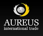 Auerus-it