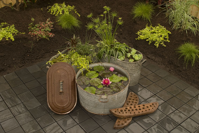 Maricopa county home shows create a container water garden - Small water gardens in containers ...