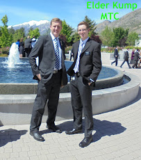 Companion in the MTC