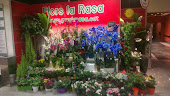 Flors La Rasa