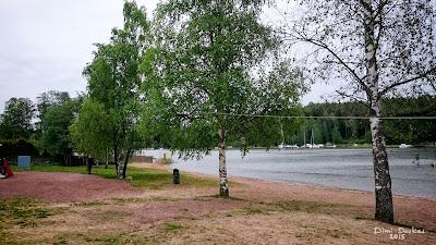 Windom asennettuna puiden väliin. Antennin syöttöpisti n. 3m korkeudella veden äärellä.
