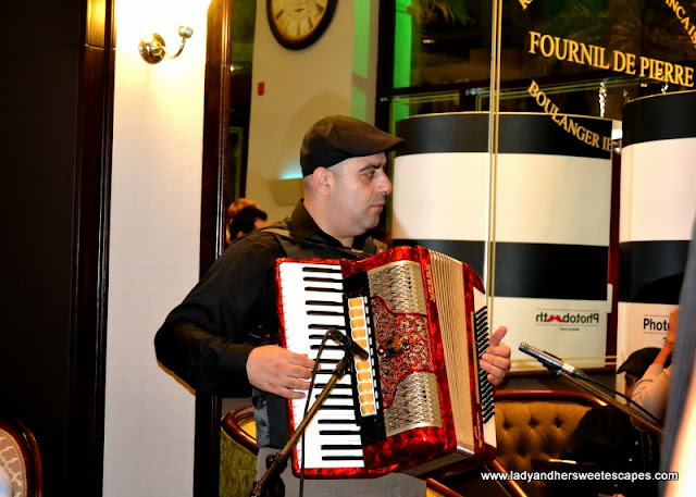 a musician playing the accordion