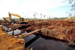 Simpak Beliung Ketidakadilan Ekonomi Masyarakat Perbatasan Kalimantan