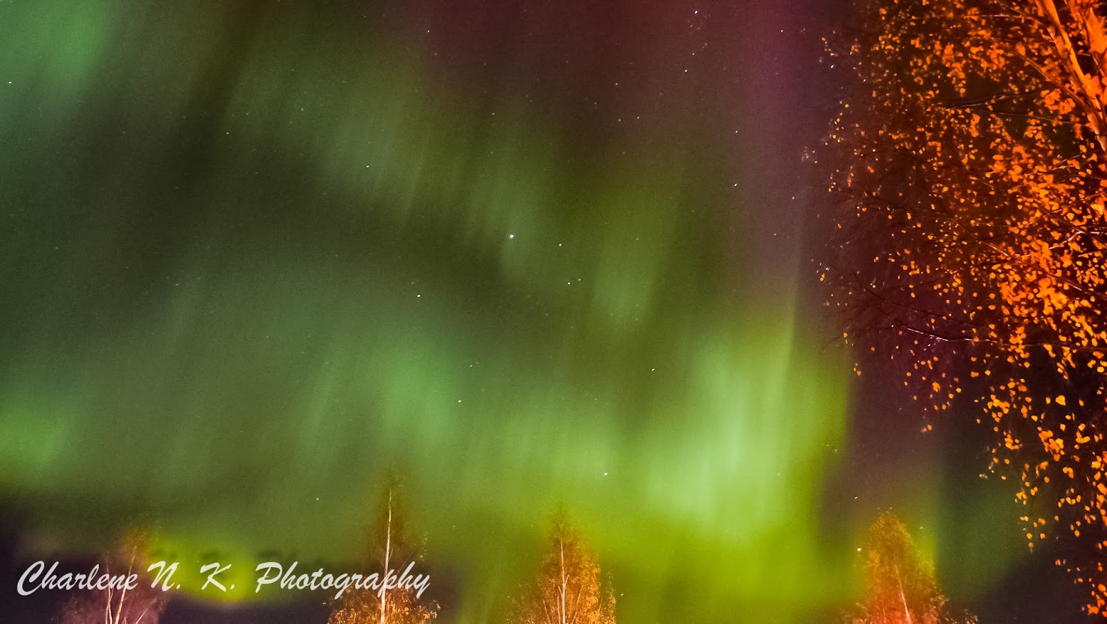 http://polarblogger-charsmeanderings.blogspot.se/2014/10/aurora-borealis-northern-lights-graced.html