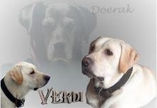 Het verhaal van Verdi