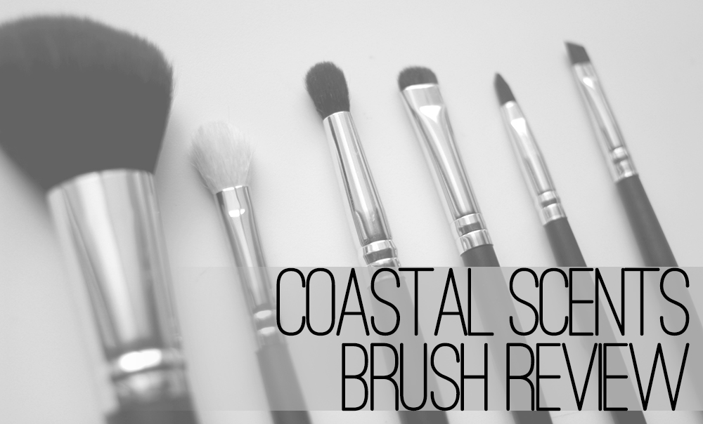 coastal scents brushes. coastal scents is a lovely online makeup retailer based out of town not too far from my homeland. through this small-but-ambitious storefront, brushes